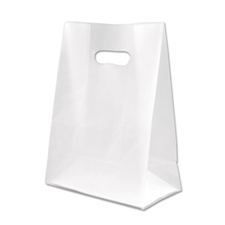 Medium clear frosted bag